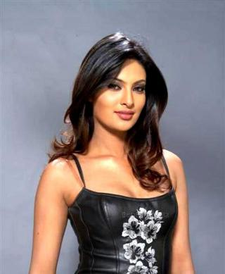 Bollywood celebrity interview videos of pakistani